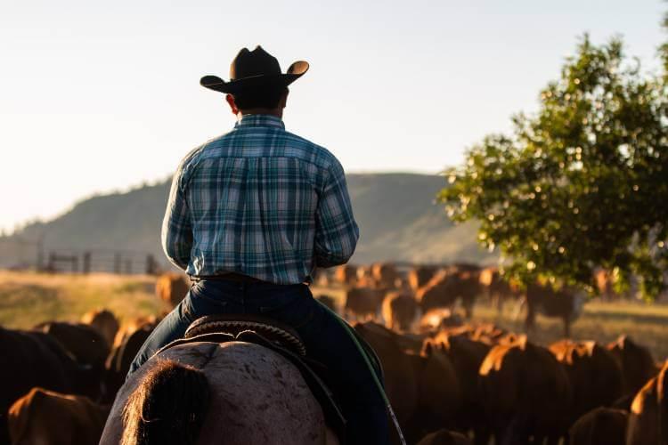 best cowboy hat